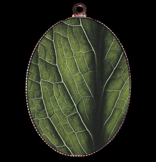 medaglione di porcellana raffigurante una foglia, per amanti della natura, del verde, della vita, degli alberi